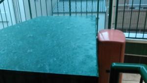 雨写真 1